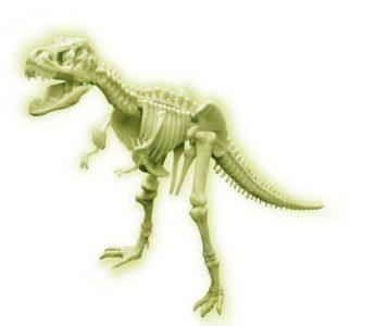 4M Sci:bits Glow T-Rex Skeleton 00-03420